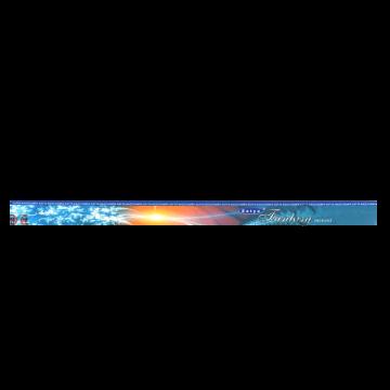 Encens Satya Fantasy 10g